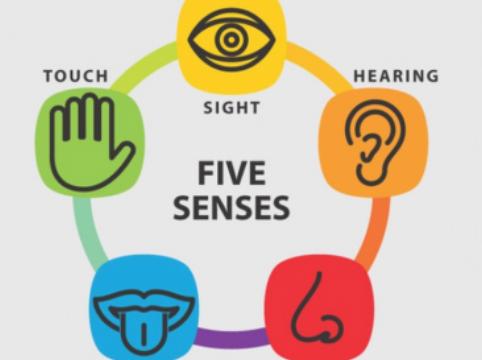 Winter School '18: HCI Technologies for Augmenting the Human Senses